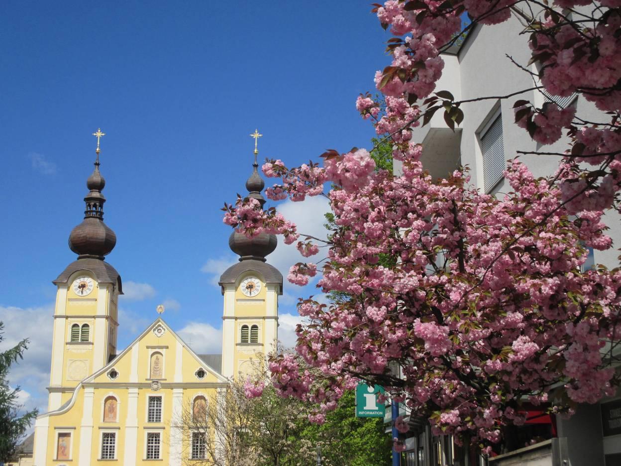 Basilika Maria Loreto mit Blueten Copyright Kulturamt St. Andrae